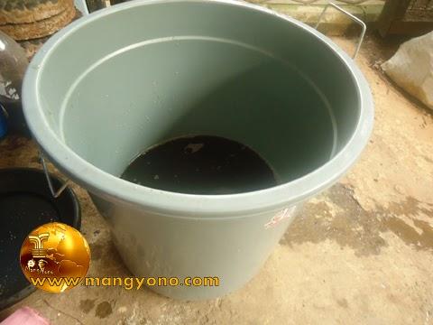 FOTO : Menyiapkan pupuk organik cair yang mau digunakan untuk pemupukan tumbuhan