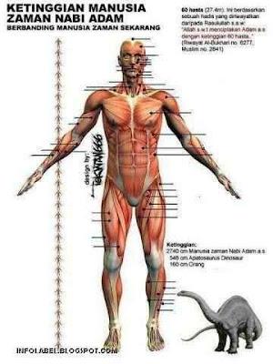 tinggi manusia zaman nabi adam - infolabel.blogspot.com