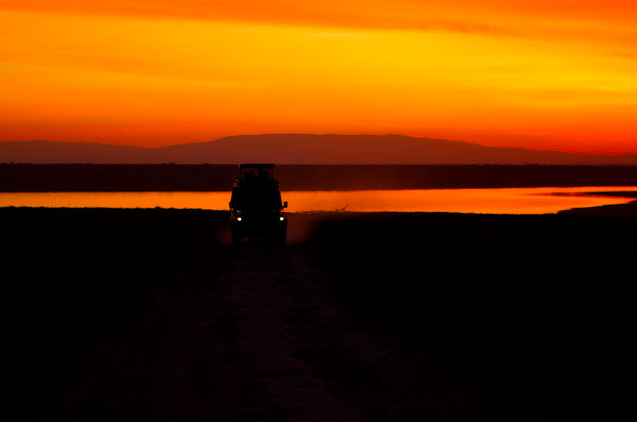 South Serengeti