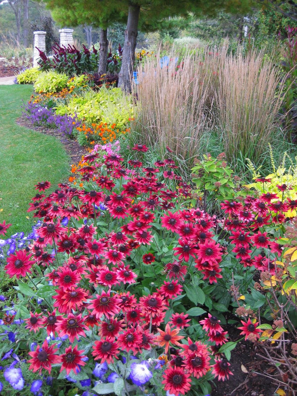 rotary botanical gardens hort blog glorious gloriosa. Black Bedroom Furniture Sets. Home Design Ideas