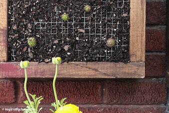 #7 Vertical Garden Design Ideas