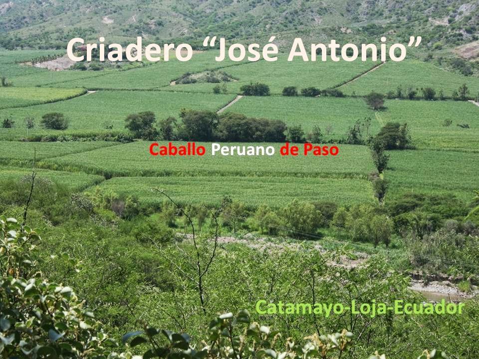 CRIADERO JOSÉ ANTONIO