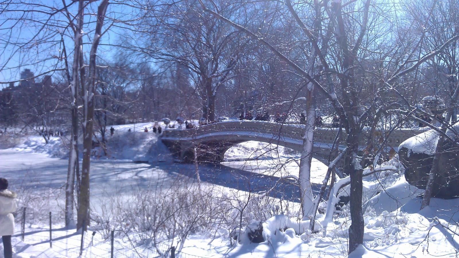 bow bridge in central park sparklingly  www
