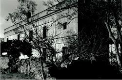 fotoGRAfía  MARCELO PUGLIA.