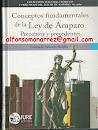 CONCEPTOS FUNDAMENTALES DE LA LEY DE AMPARO PRECEPTOS PRECEDENTES