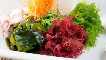 8 Manfaat Dan Khasiat Rumput Laut Untuk Kesehatan