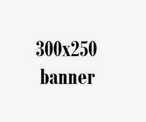 300 x 250 Banner
