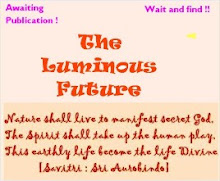 The Luminous Future