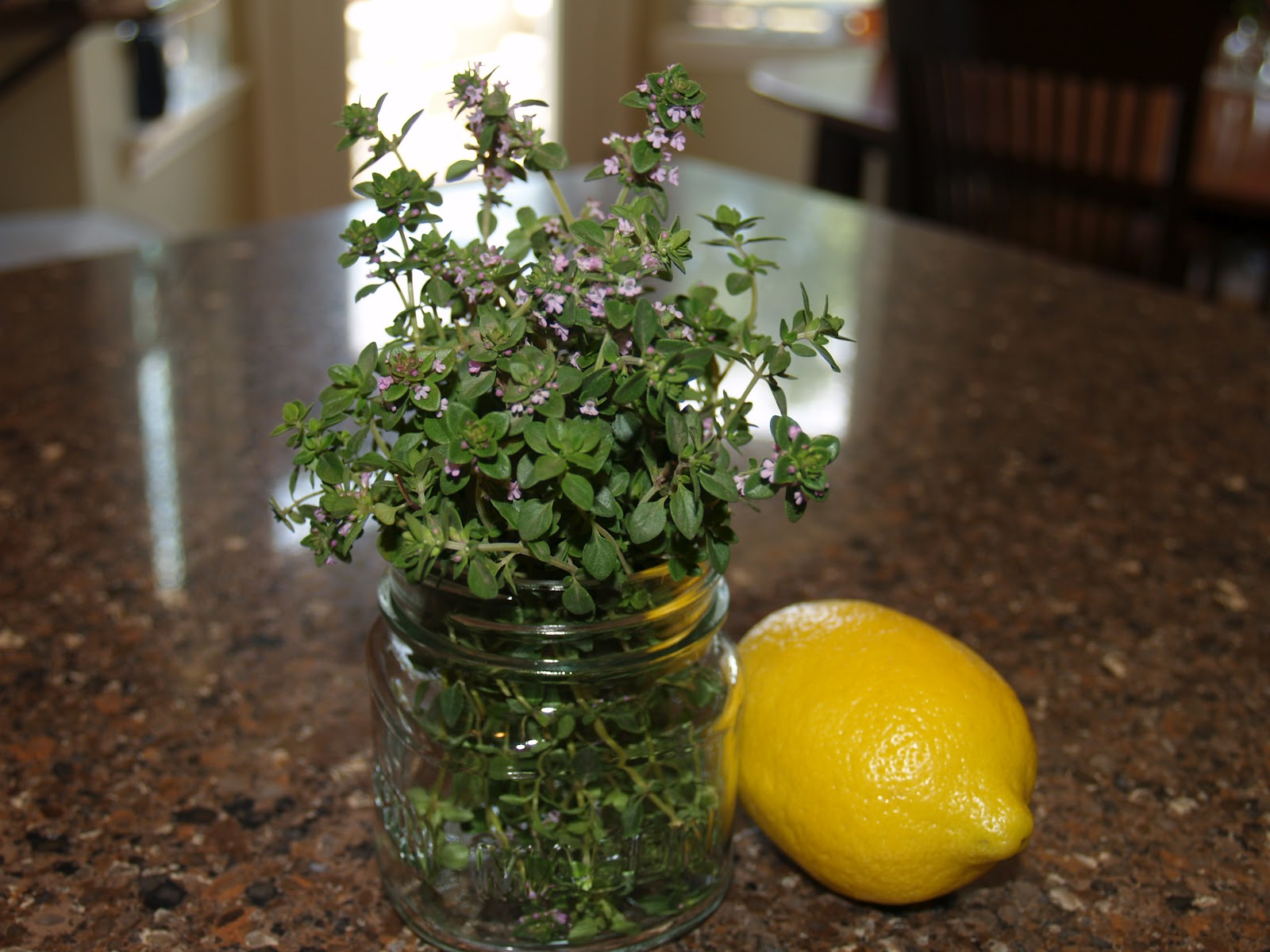 how to look after thyme