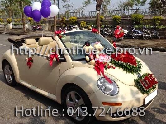 Cho thuê xe cưới mui trần con Bọ Beetle - giá hấp dẫn