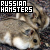 I like Russian hamsters