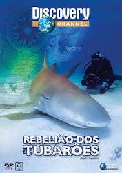 Baixe imagem de Rebelião dos Tubarões (Dublado) sem Torrent