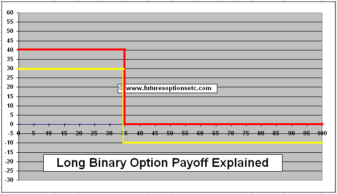 Binary put option payoff