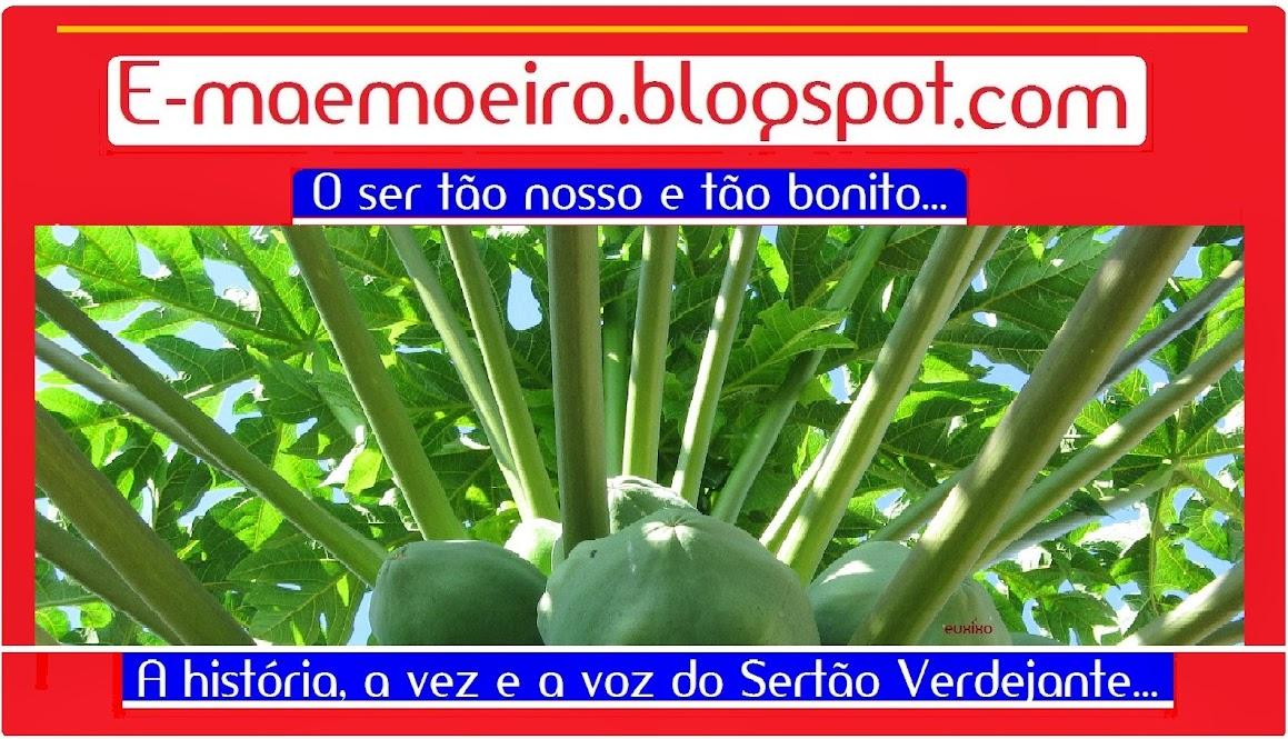 e-maemoeiro.blogspot.com