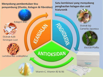 Kehebatan shaklee Collagen powder