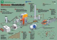 Energía de la Biomasa Agencia Andaluza de la energía