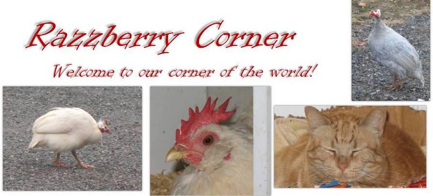 Razzberry Corner