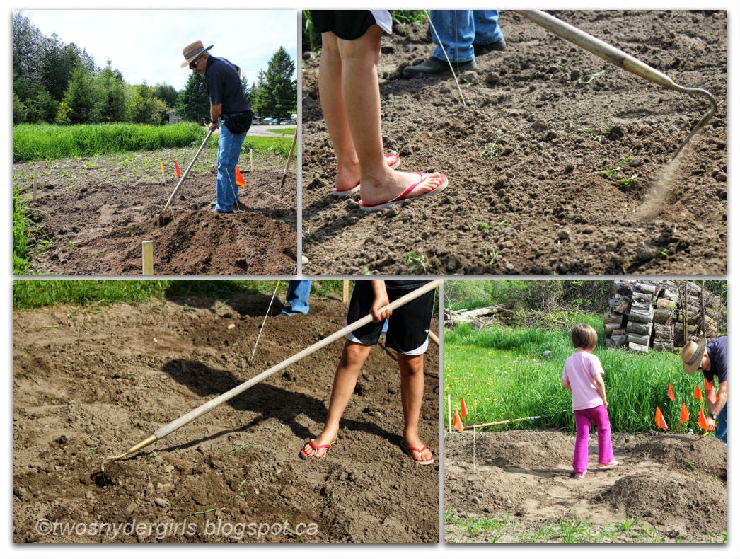 Preparing the ground for a garden