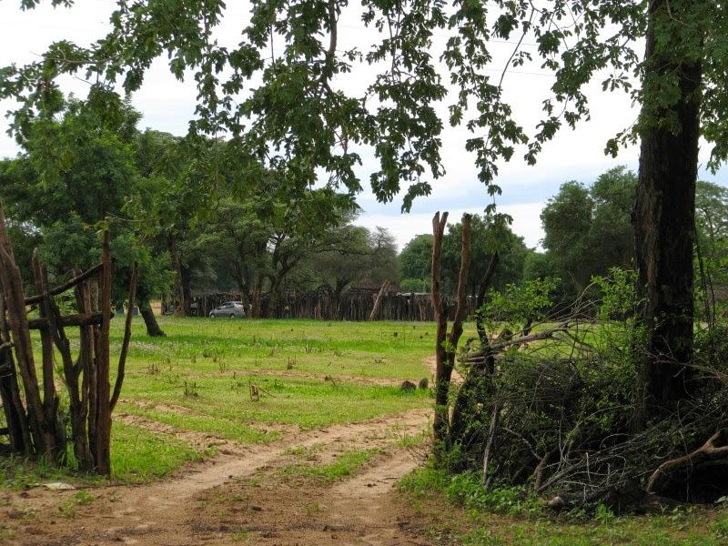 Kavango - kraal