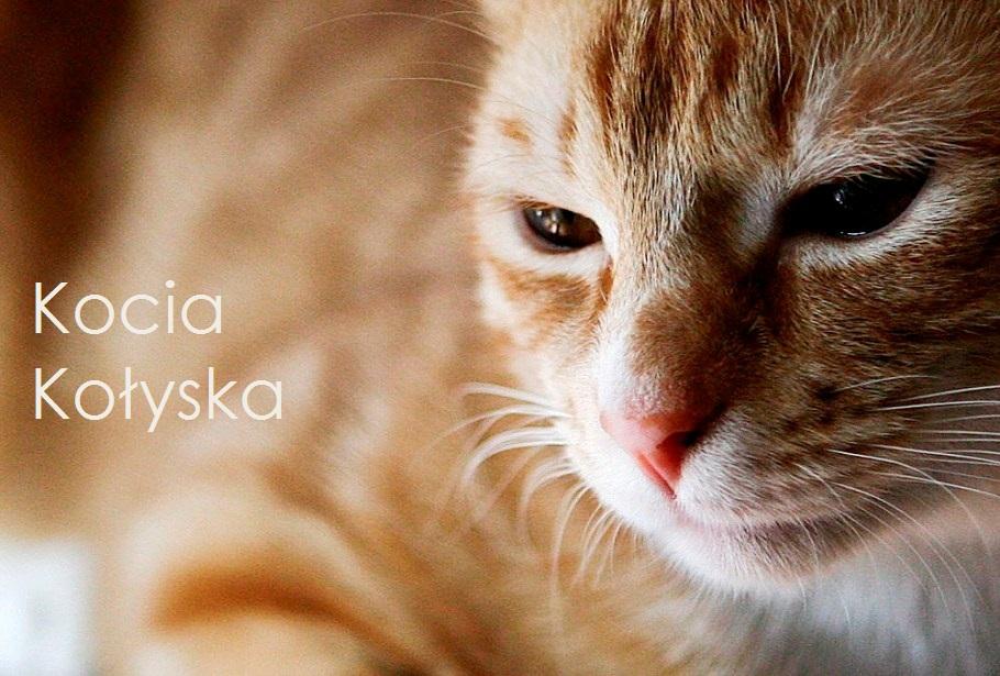 Kocia Kołyska