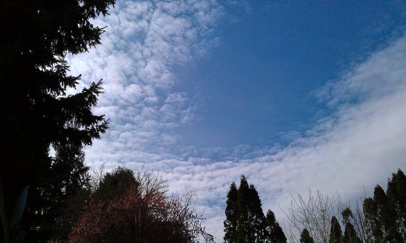 Blue Sky Smiling!