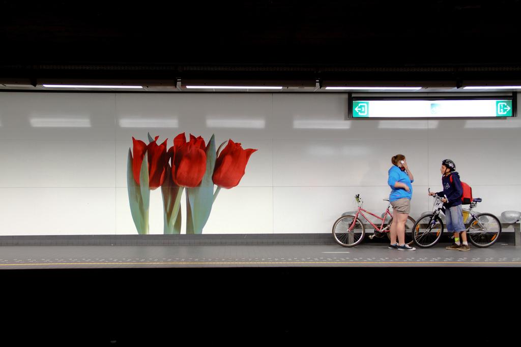 Metrô em flor, by Guillermo Aldaya / PhotoConversa
