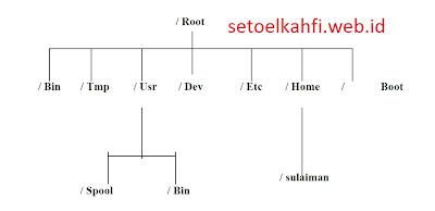 Struktur Direktori Linux Dan Organisasi File