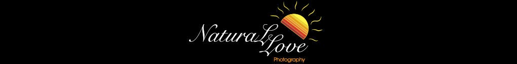 Natural Love Photography
