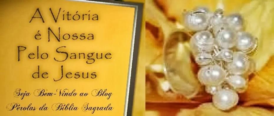 Pérolas da Bíblia Sagrada©
