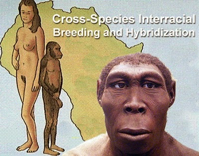 The Hybrid Origins of Modern Man