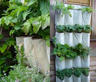 Apartment Garden Simple Great Kitchen Design Ideas Decor Pictures