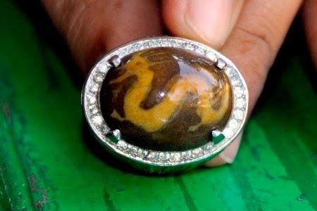 Batu akik termahal di Indonesia Rp 18 Milyar itu bernama akik Janggus dari Langkat, Sumatera Utara