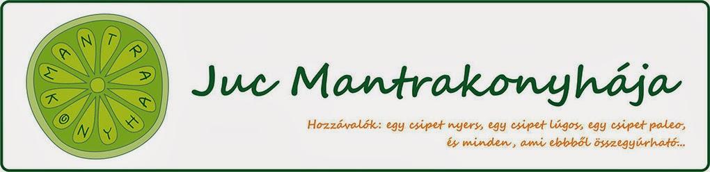Mantrakonyha