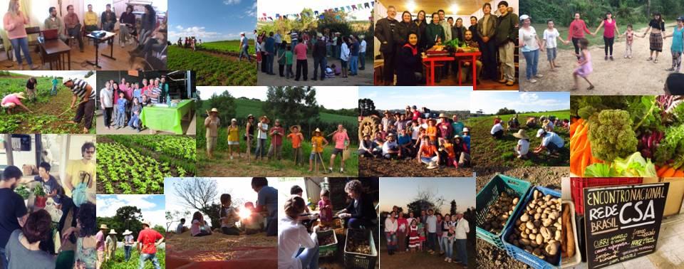 Comunidade que Sustenta a Agricultura - Curitiba