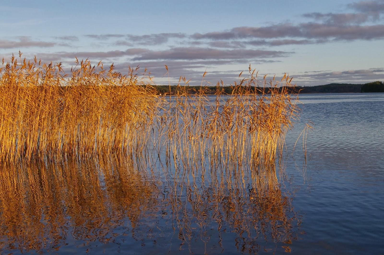 Mökkikeskus Mökkitalkkari ja mökin remontti Keuruu Jämsä Ruovesi Virrat Mänt