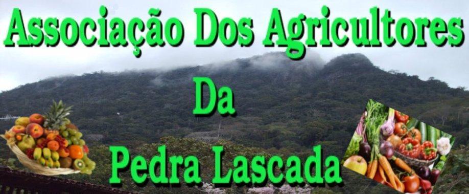 Associação  Dos Agricultores Da Pedra Lascada