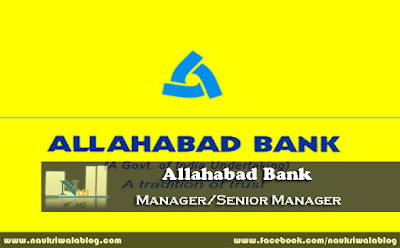 Manager/Senior Manager Job 2015