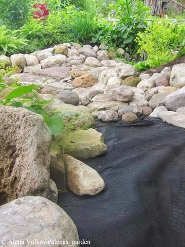 садовая дорожка из камня, своими руками, каменный настил, булыжники, дорожка в саду