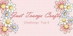 Just Tracys Crafts Challenge