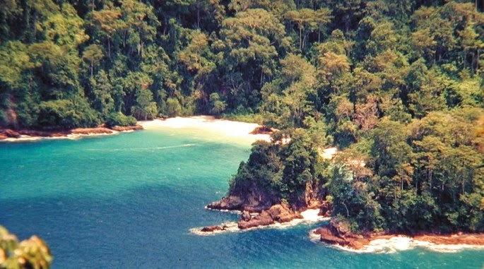 Gambar Pemandangan di Pantai Bandealit Jember