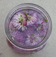 chive blossom vinegar-tutorial