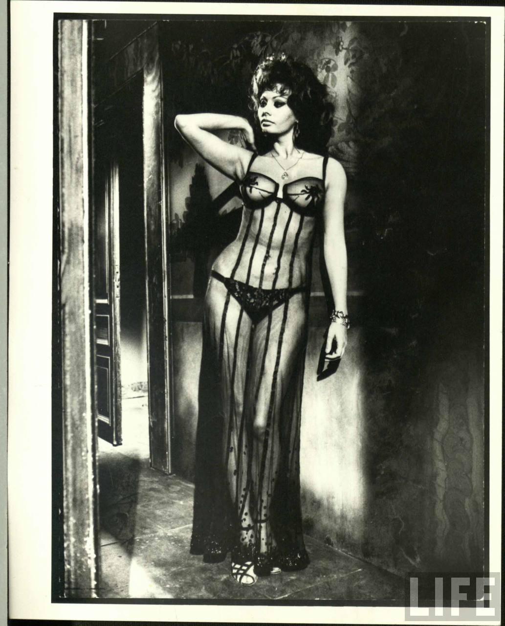http://4.bp.blogspot.com/-Ss23uU827OQ/T1TkxqHn4RI/AAAAAAAAB0Q/DSHqV8dY41M/s1600/Sophia+Loren+1964.jpg