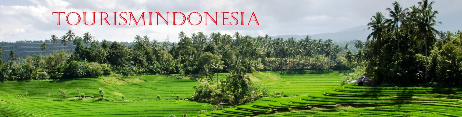 Tourism Indonesia