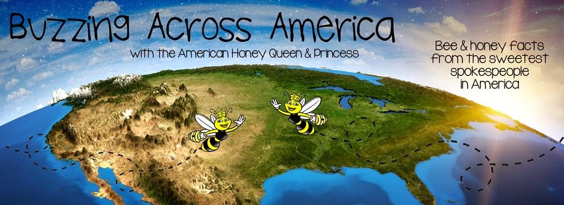 Buzzing Across America