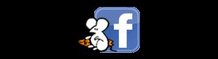 Grupo de ratas en facebook