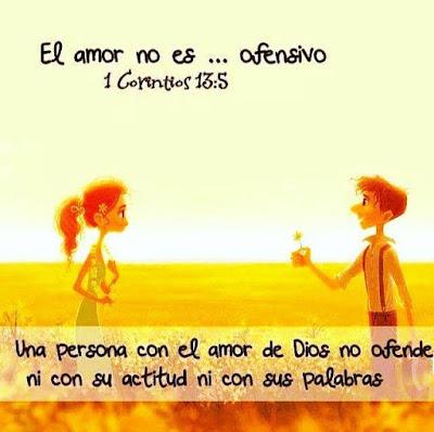 El Amor No Es...