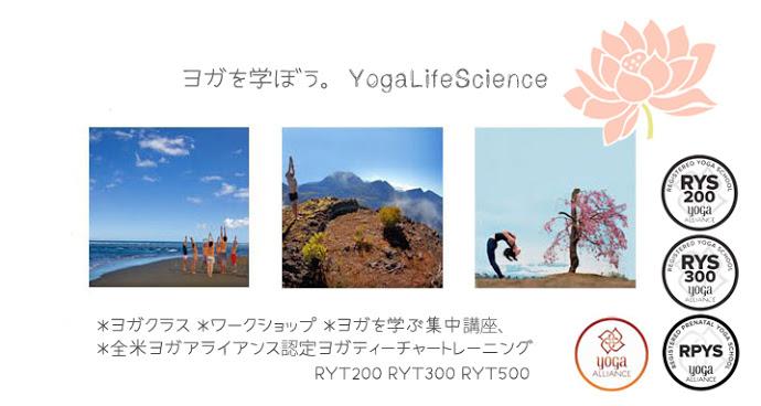 富山のヨガブログ Yoga Life Science(ヨガライフサイエンス)