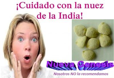 Nuez de la india terapias y productos naturales share - Productos de la india ...