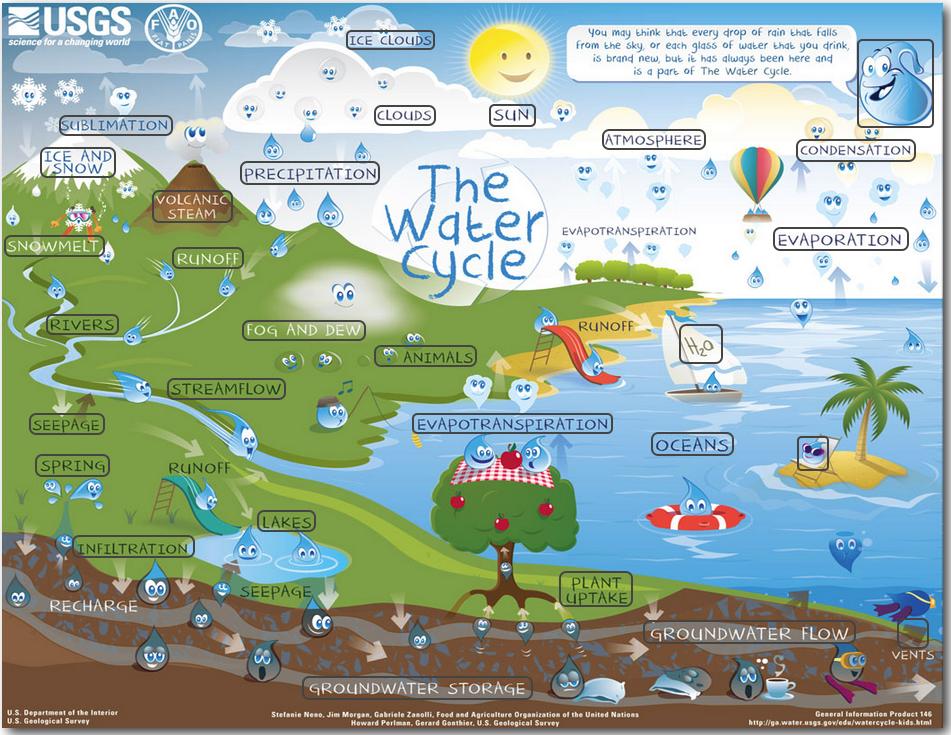 water cycle board game pdf