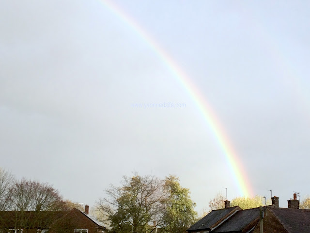 Rainbows This Week